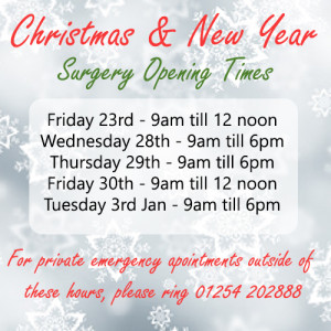 dentist-christmas-opening-2016
